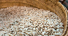 Gastronomía de Granollers