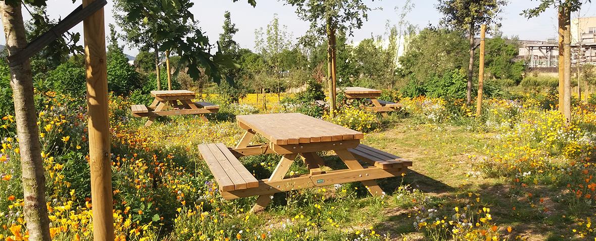 Zona de picnic en Granollers