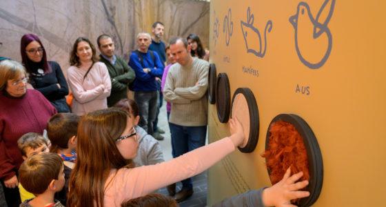 Museo Ciencias Granollers