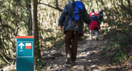 Parque Natural Montseny (3)