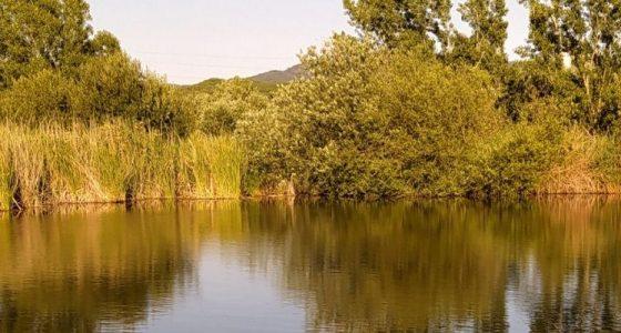 La ruta del agua - Turismo Granollers